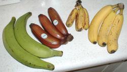 Бананы, ранее не виданные...